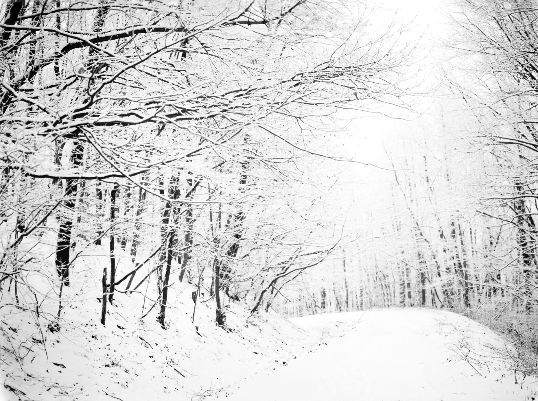Axel Bernstorff, Snowscape I, Diosjeno, Hungary. Collectable limited edition fine art prints.