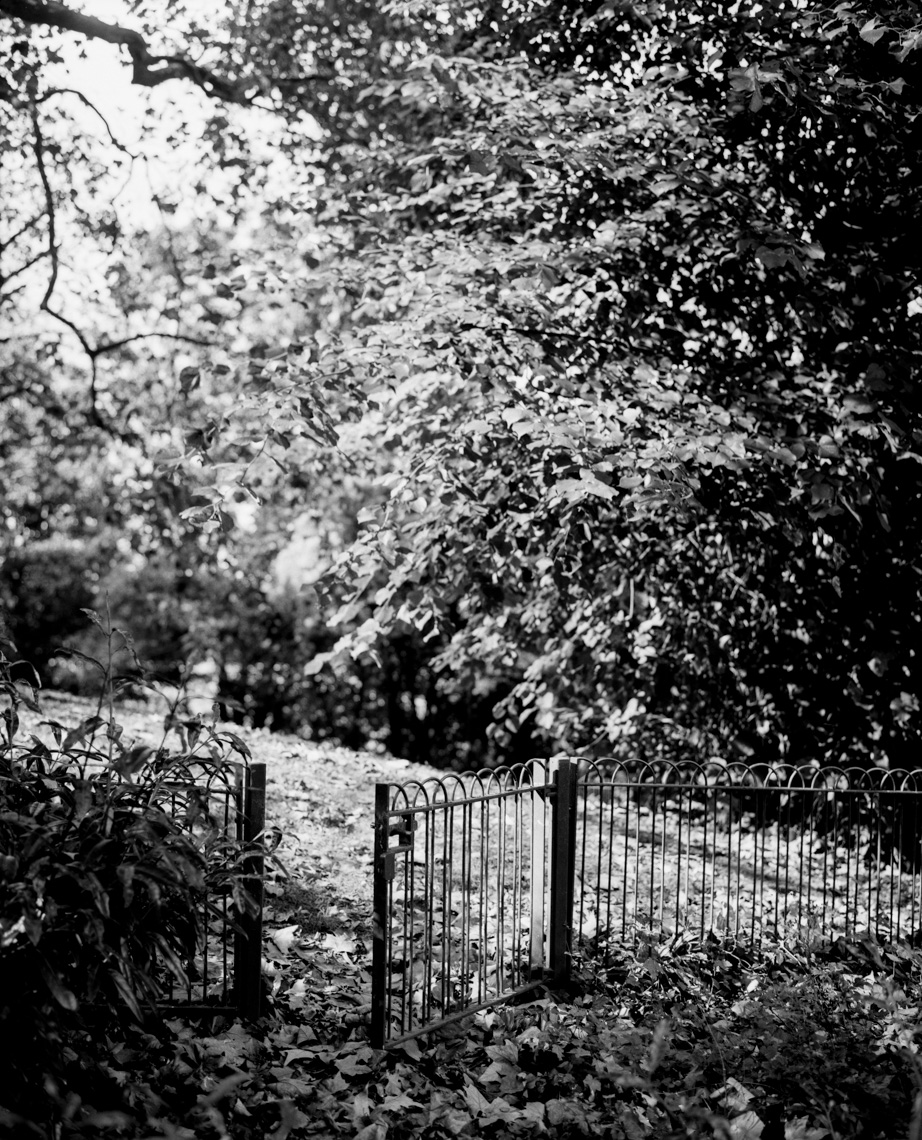 Axel Bernstorff, Collectable limited edition fine photographic art prints. Gate. Battersea Park bench II. London, England.